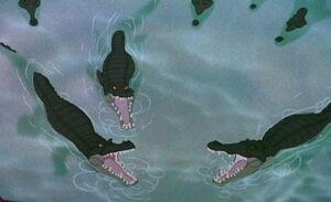 Saltwater Crocodiles.jpg
