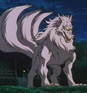 Three-Tailed Fox Inuyasha