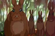 Woundwort's Rabbits
