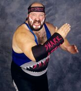The Shark WCW