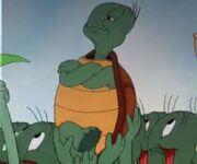 Cecil Turtle.jpeg