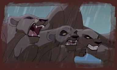 Zira's Lions