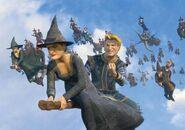 Witches shrek