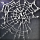 Spider Web.png