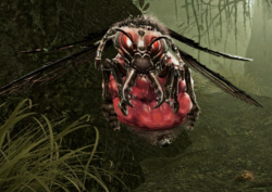 Carpenter Drone (Enemy).png
