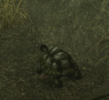 Island Turtle (Enemy).png