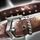 Pawn's Belt.png