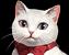 Kayna (NPC Icon).png