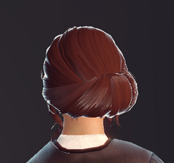 Side-pinned Hair (Fiona 2).png