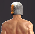 Light Plate Helm (Lann 2).png