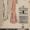 DuBarry 1076B