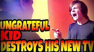 UNGRATEFUL_KID_DESTROYS_HIS_NEW_TV!!!