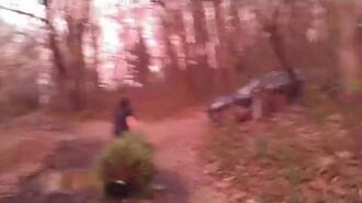 William_Throws_The_Christmas_Tree_In_The_Woods