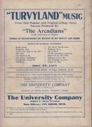 Turvyland-backcover