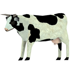 Cow skin white 1 redirect.png