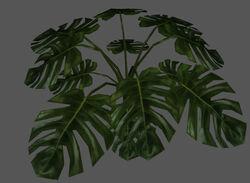 Plant2 redirect.jpg