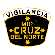 VIGILANCIA CDN