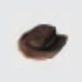 Howdy Pardner Hat