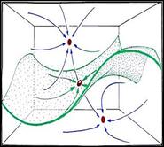 David R. Weinbaum Figure 1 3 D