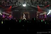 Miku Expo Indonesia Luka Luka Night Fever