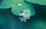 雨水 (Yǔshuǐ)
