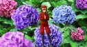 Ninja CUL 3D Model Kio