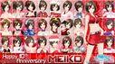 Meiko all modules