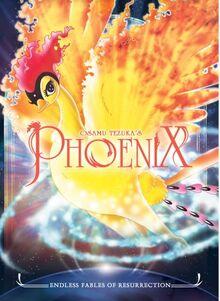 Phoenix 2004 DVD Cover.jpg