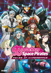 Bodacious Space Pirates Abyss of Hyperspace Cover.jpg