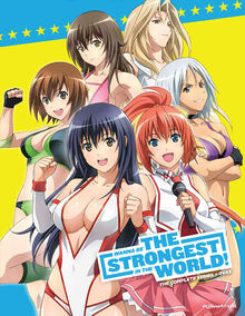 Wanna Be the Strongest in the World 2013 DVD Cover.jpg