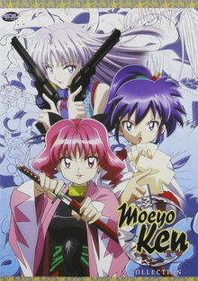 Moeyo Ken 2007 DVD Cover.png