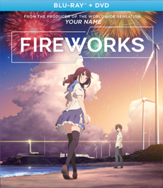 Fireworks 2017 Blu-Ray DVD Cover.png