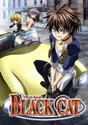 Black Cat DVD Cover.png