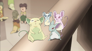 28. Mice are very cute