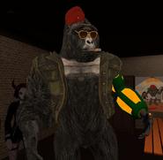 Rofl April 4th 2020 30 Jor new avatar