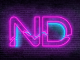 Neon Divide