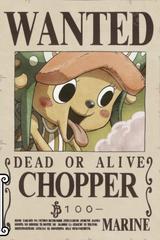 Tony Tony Chopper