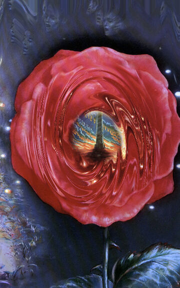 Rose66.jpg