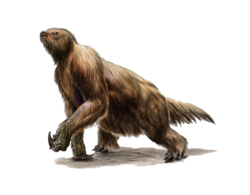 Megatherium (Dungeons And Dragons)
