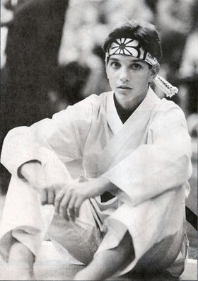 Daniel-the-karate-kid-27007643-353-500.jpg