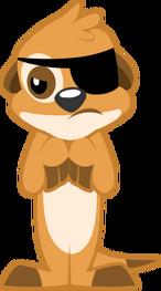 Meerkat Spy