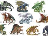 Dragon (D&D)