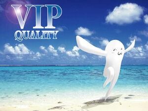 VIP quality.jpg