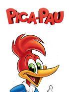 Pica-Pau (1995)