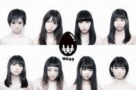 WAgg.jpg