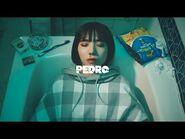 PEDRO - 丁寧な暮らし -OFFICIAL VIDEO-