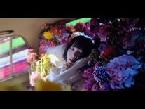 PEDRO_-_浪漫_-OFFICIAL_VIDEO-