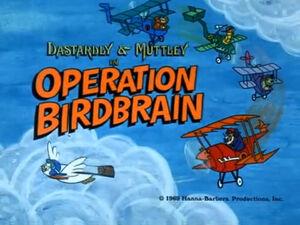 Wr dm operation birdbrain.jpg
