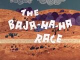 The Baja-Ha-Ha Race