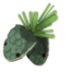 Ice Pine.png